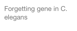 Forgetting gene in C. elegans